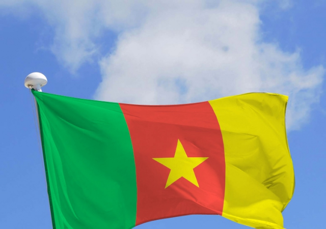 Cameroun : Vers la création d'une faîtière nationale des mutuelles