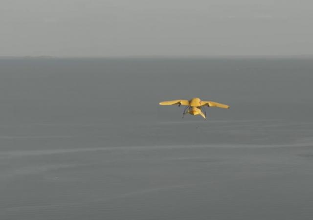 En Afrique de l'Est, la livraison de médicaments par drone sauve des vies